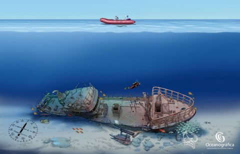 Mogan boat wreck dive