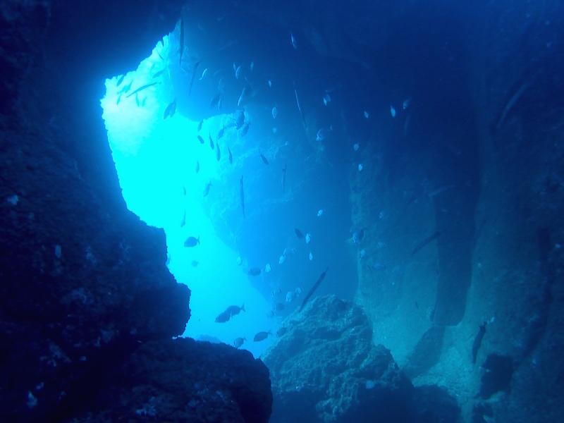 the Arch of El Cabron while diving gran canaria
