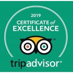 tripadvisor award for 2019 for leagues ahead diving