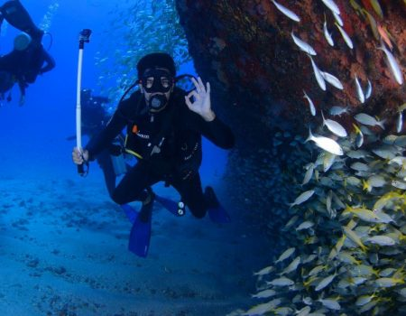diver with fish playa del ingles